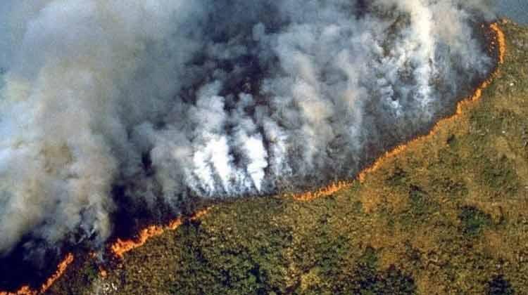 Amazone-forest-fire-2230819.jpg