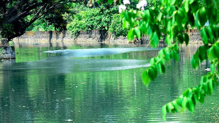 മാലിന്യം തള്ളൽ നിന്നു; കനോലി കനാലിൽ തെളിനീരൊഴുകി