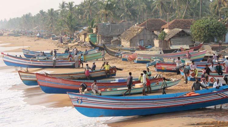 coastal-area.jpg