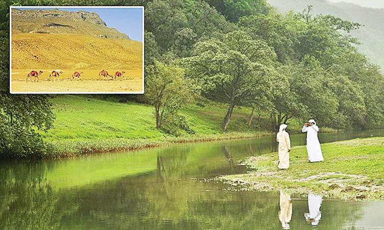 സലാല അറബ് വേനൽക്കാല റിസോർട്ടുകളുടെ തലസ്ഥാനം