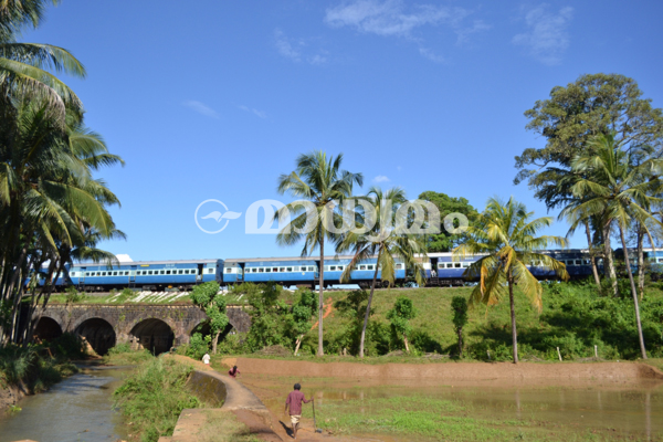nilambur-train9