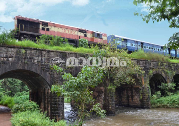 nilmabur-train-4