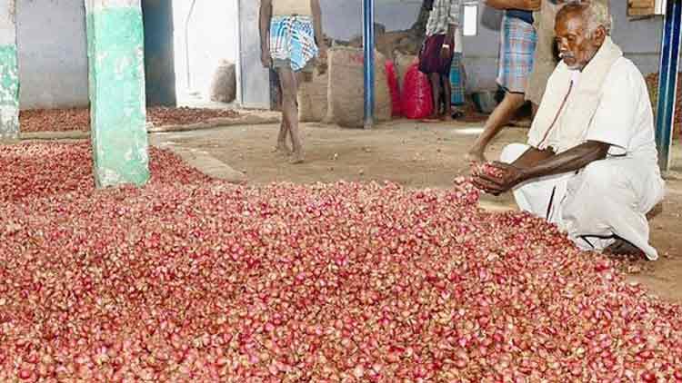 തമിഴ്നാട്ടിൽ 300 കിലോ ചെറിയ ഉള്ളി മോഷണം പോയി