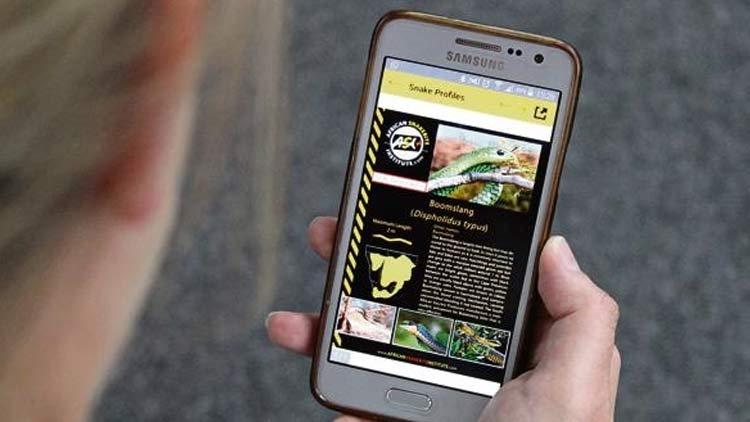 rgcb-app-241119.jpg