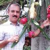 dragon-fruits
