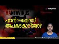 ഹാൻറ വൈറസ് അപകടകാരിയോ?   madhyamam  Hanta Virus