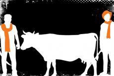 Cow-Vigilant
