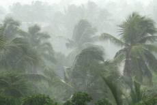 Heavy-rain-21-7-19.jpg