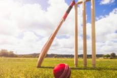 cricket-22719.jpg