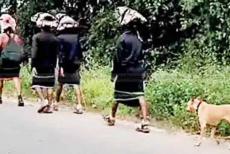 Stray-dog-covers-Sabarimala-pilgrims.