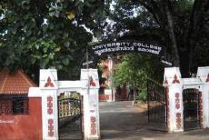 University-college