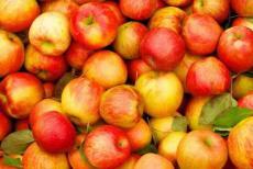 apple2-24719.jpg