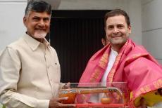 chandrababu-naidu-with-rahul