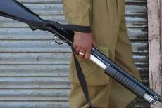 kasmir-pellet-gun