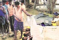 maoist-dead-bodies-11219.jpg