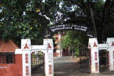 univercity-college