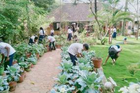 school-farming