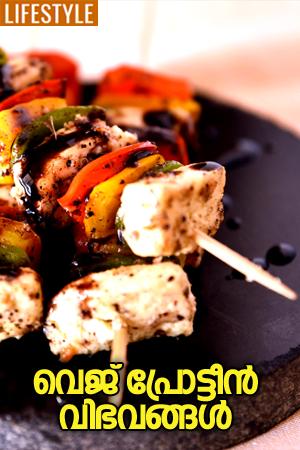 veg-protein-dishes