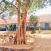 bhoothanam-school